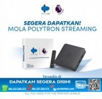 STB Streaming Mola TV Polytron